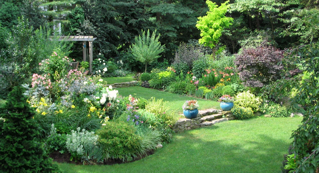 OurGarden2