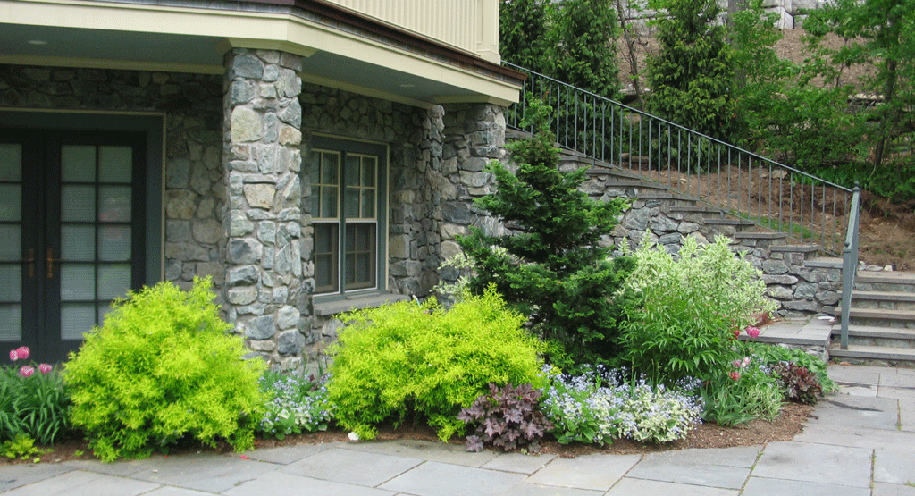 TerracedLandscape4